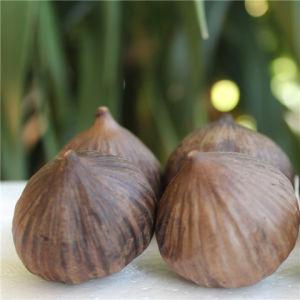 Professional Export Solo Black Garlic pictures & photos