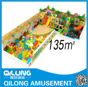 Unique Design for Indoor Playground (QL-31124Y) pictures & photos