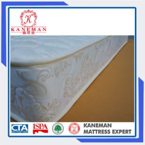 Dormitory Spring Mattress Single Cheap Fr Spring Mattress pictures & photos