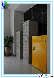 Flammable Safety Storage Cabinet for Class 3 Liquids (HL-GG028) pictures & photos