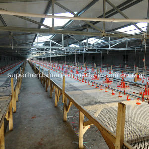 Full Set High Quality Automatic Poultry Farm Equipment pictures & photos