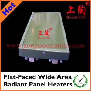 Flat-Faced Wide Area Radiant Panel Heaters pictures & photos