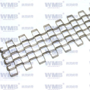 Flat Wire Mesh Belt (SS316) pictures & photos