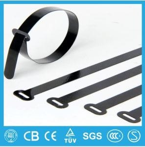 Uncoated Ball Lock/Roller Ball Stainless Steel Cable Ties pictures & photos
