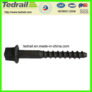 Rail Sleeper Screw Spikes with Standard Astma66-87 Popular in USA pictures & photos