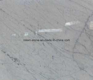Carrara White Marble Slab for Countertop pictures & photos