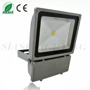 High Power LED Floodlight 80W with 2 Years Warranty (SS-CL-0901)