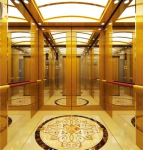 Hydraulic Home Villa Elevator/Lift (RLS-223) pictures & photos
