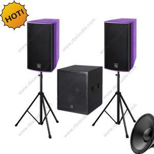 Dw-12 2.0 Powerful PRO PA Speaker Audio