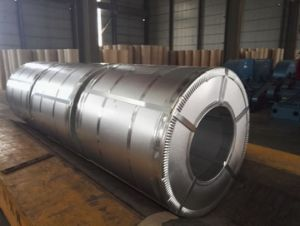 High Quality PPGI Galvanized Steel Coil for Building Material pictures & photos