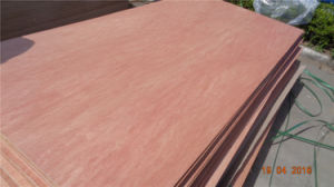 Cheap Price Red Hardwood Face Good Quality for Furniture Commercial Bintangor Plywood pictures & photos