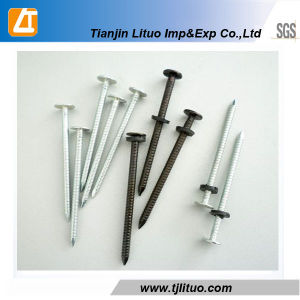 Flat Head Electric Galvanized Ring Shank Nails pictures & photos
