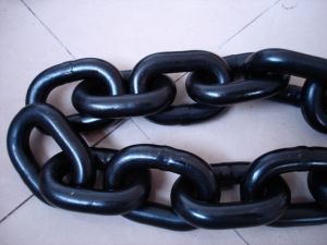 G80 Lifting Anchor Lifting Chain Black Finished pictures & photos