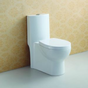 Soft Closing One Piece Toilet at-580 pictures & photos