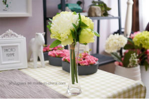 Tall Clear Glass Vases; Clear Cylinder Vases pictures & photos