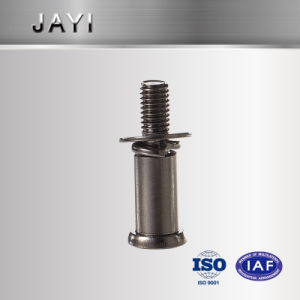 Straight Knurling Head Bolt of Stainless Steel pictures & photos