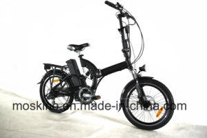 20inch Style E Bike (TDN05Z)