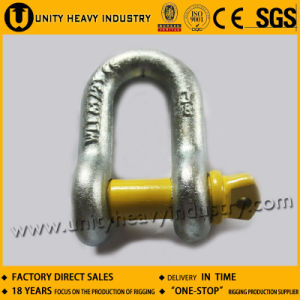 G 210 U. S Type Screw Pin Forged Chain Shackle