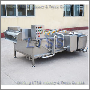 Vegetable and Fruit High Pressure Air Bubble Cleaning Machine pictures & photos
