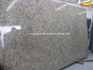 Santa Cecilia Dark Granite Slab for Countertop (YY-Santa Cecilia light) pictures & photos