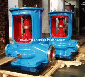 Vertical Split Case Pump pictures & photos