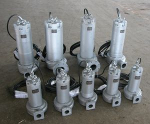 ASG/WQS Submersible Stainless Steel Sewage Pump pictures & photos