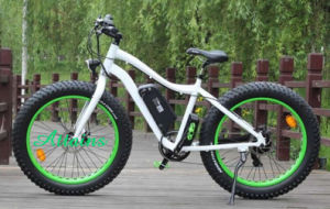 26 Inch Lithium Battery City Mountain Snow Electric Bicycle with Big Tyre pictures & photos
