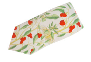 Silk Printed Floral Tie pictures & photos