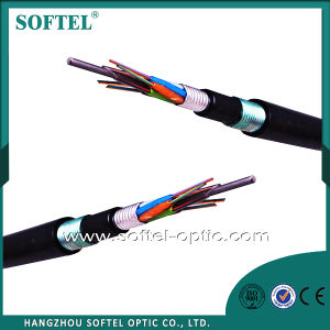 Figure 8 Self-Supporting /Steel Wire Armoured Fiber Optic Cable pictures & photos