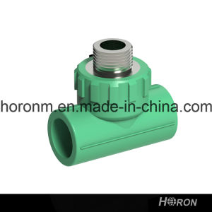PPR Water Pipe Fitting (MALE THREAD TEE) pictures & photos