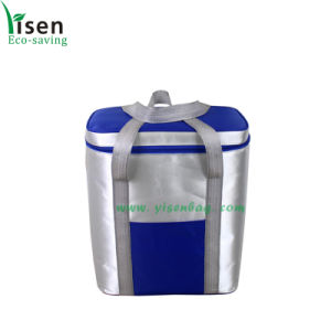Picnic Bag, Food Cooler Bag (YSCB00-0221) pictures & photos