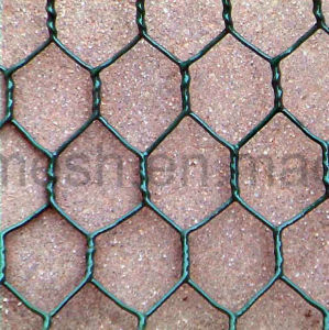 Powder Coated Hexagonal Wire Mesh pictures & photos