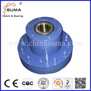 Ckl-B50150 Sprag Type Backstop Clutch Specially for Conveyor pictures & photos