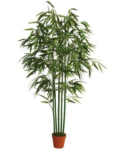 Artificial Bamboo Tree with Natural Stem for Office Decoration pictures & photos