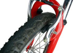 Mini Folding Electric Bike 36V 250W pictures & photos