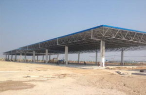 Professional Steel Structure Customized Long Life Span Space Frame pictures & photos