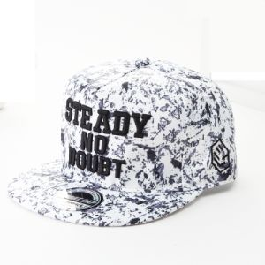 3D Embroidery Snapback Cap pictures & photos