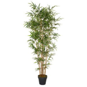 Artificial Bamboo Plants with Plastic Pot pictures & photos