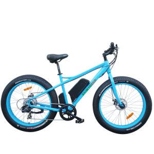 Mountain Electric Bike/Lithium Battery Bike/20 Inch Bike/Fat Tire Bike pictures & photos