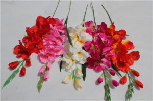 Artificial Good Quality Phalaenosis Orchid Flowers Home Decoration pictures & photos