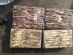 Chinese Frozen Squid Price Size 100-200g pictures & photos