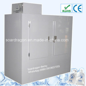 Customized Refrigerated Ice Storage Freezer with Slide-on Compressor pictures & photos