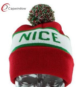 Popular Winter Hat & Knitted Hat 17094 pictures & photos