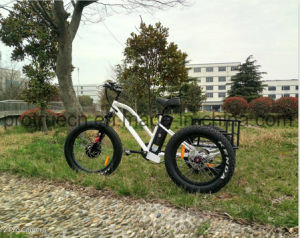 3 Wheel Electric Bicycle with Rear Cargo pictures & photos