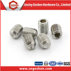 DIN916 Stainless Steel Hexagon Socket Set Screws with Cup Screw pictures & photos