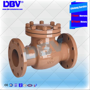 Industrial A105 Flanged Swing Check Valves