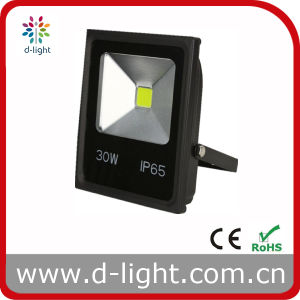 30W 2400lm IP65 Outdoor Use COB LED Floodlight pictures & photos