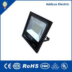 IP66 10W 20W 30W 50W 70W 100W LED Flood Lamp pictures & photos