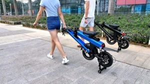 Folding Electric Bike with Panasonic Lithium Battery pictures & photos