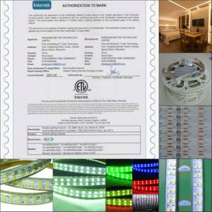 LED Neon SMD Rope Light 220V Outside Wall Decoration pictures & photos